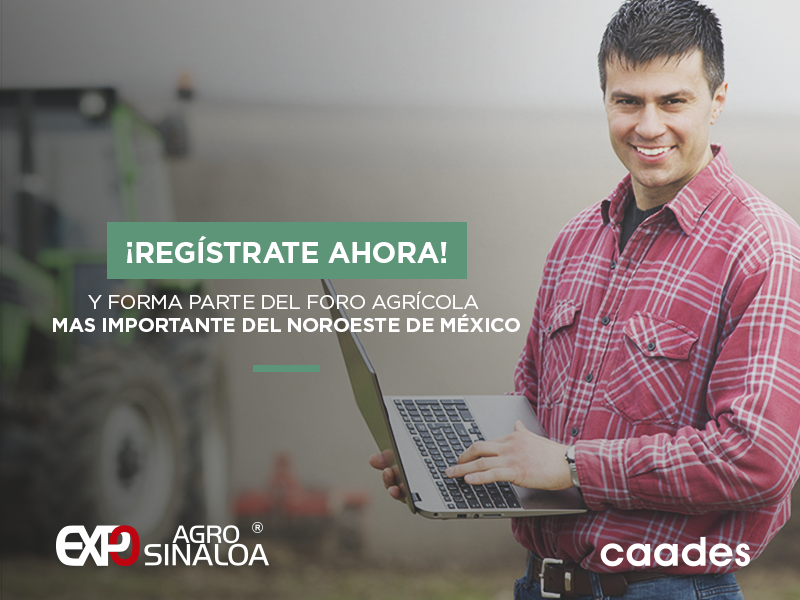 Registrate en Linea