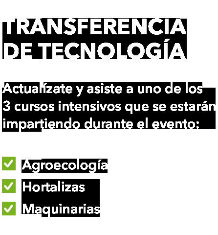 transf2
